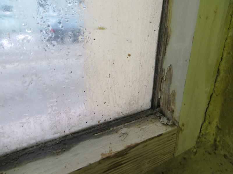 Relativ Asbest als Gebäudeschadstoff - erkennen, untersuchen und bewerten SE38