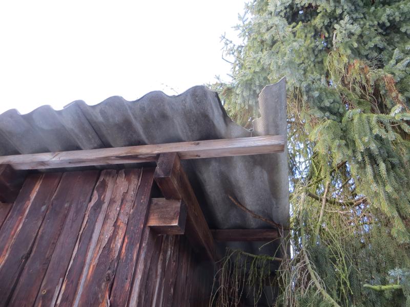 Relativ Asbest als Gebäudeschadstoff - erkennen, untersuchen und bewerten UC57